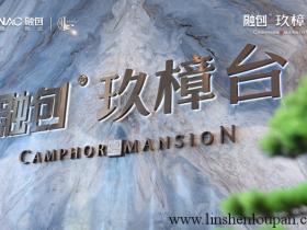 香港居民能在中国内地买房按揭的楼盘?