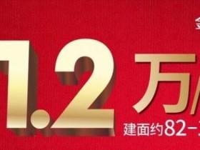 惠州大亚湾超大楼盘:金地天润自在城