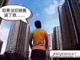 在深圳工作但是在深圳买不起房就买大亚湾楼盘吧!
