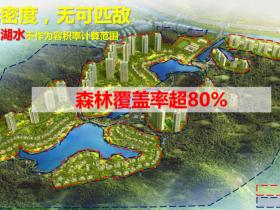 碧桂园湖光山色29、30栋户型与备案价格