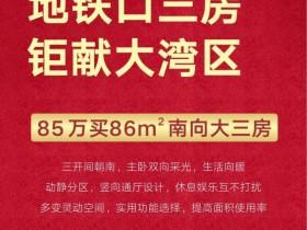 惠阳最新热销地铁口一手新楼盘