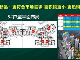 惠阳中洲公园城5栋首付1.5成起!