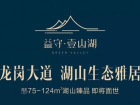 惠阳新圩最新楼盘:益守壹山湖好吗?