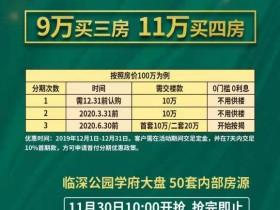 惠阳中洲公园城低首付10万起,免息半年
