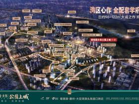 碧桂园太东公园上城 39栋40栋规划和户型图