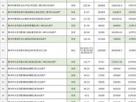 惠州专业法拍房按揭购房流程、最新房源