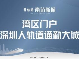 碧桂园南站新城3房户型带装修均价17000