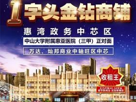 大亚湾中心区新华联广场月子中心小户型80-90万