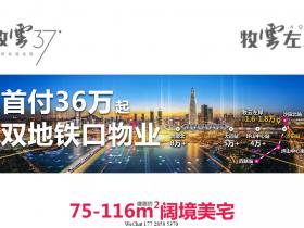 惠州靠近坪山交界的地铁楼盘:牧云左岸